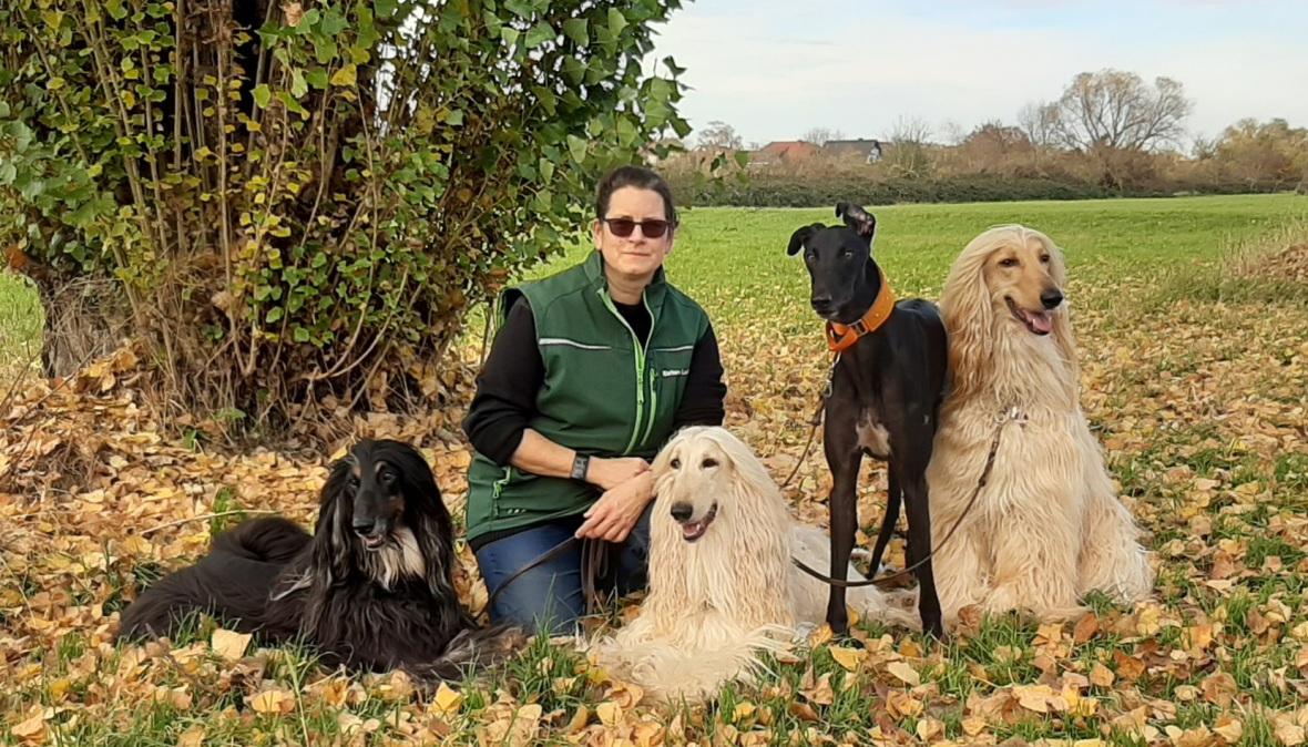 Tierphysotherapie Luchmann